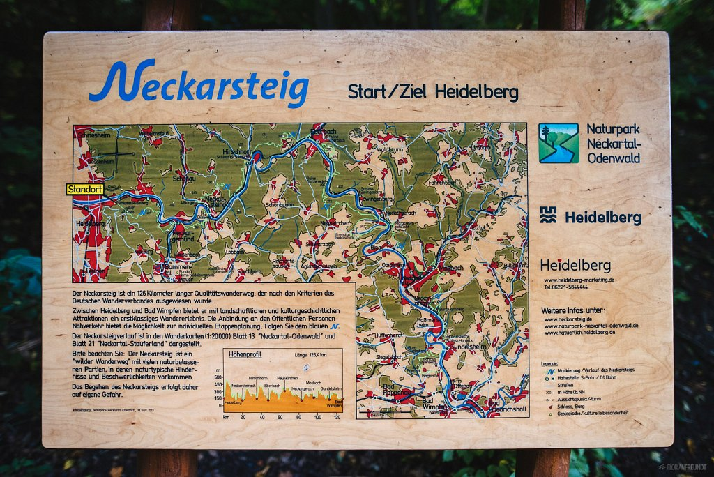 Walking the Neckarsteig